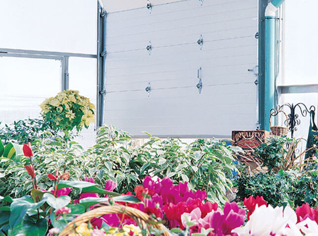 Inside View of a GreenHouse with a Commercial doors